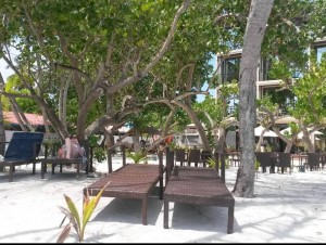 Arena beach hotel grounds 2 (960x725)